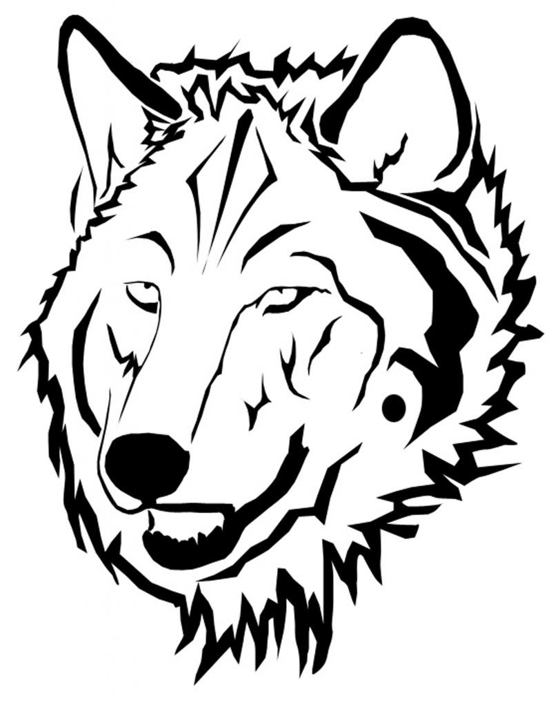 Wolf Drawing Face at GetDrawings | Free download