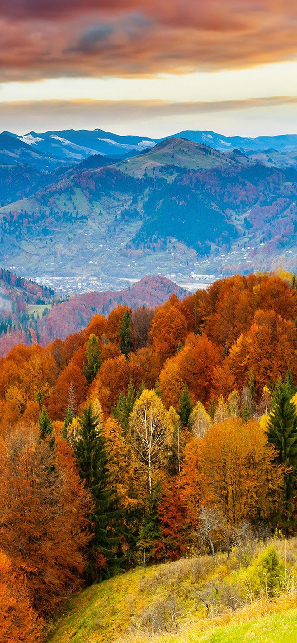 秋の山ラスティ森の色iphonex壁紙 Iphoneチーズ