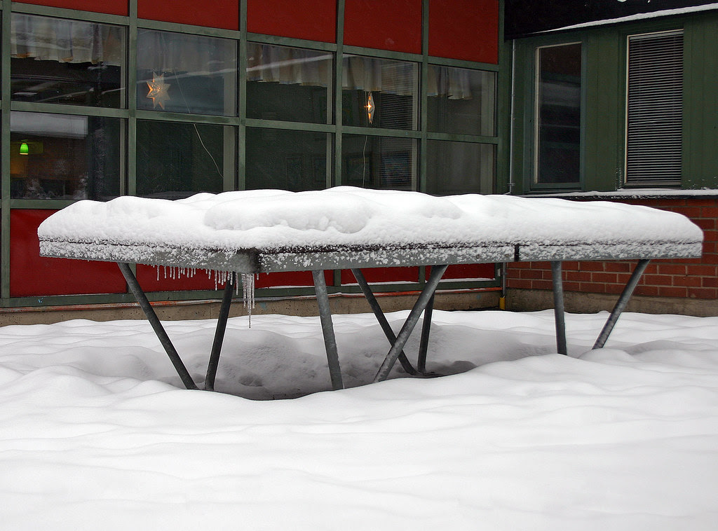 Ping Pong, Anyone?
