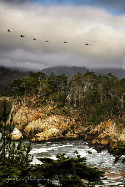 Portrait Version of Point Lobos - A beautiful scene on a stormy day at Point Lobos California. There were so many pelicans that day it was hard to get an image without them, which was fine with me :) The storm seem to make them come alive, probably churning up food sources - John Brody Photography / JohnBrody.com