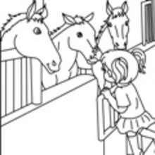Caballo Dibujos Para Colorear Lecturas Infantiles Juegos