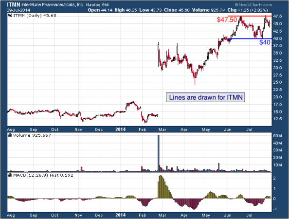 1-year chart of InterMune (Nasdaq: ITMN)