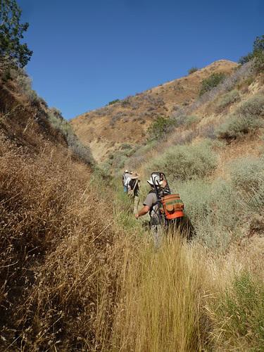 exploring a canyon