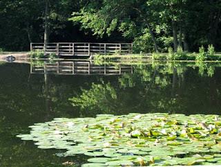 Rahway River Park