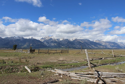 IMG_1976_At_John_Moulton_Barn_&_Teton_Mtns