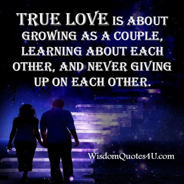 True Love Is Never Giving Up On Each Other Wisdom Quotes