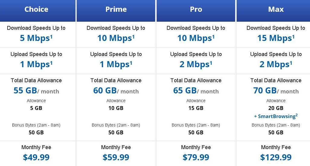 Internet Services: Internet Services Prices