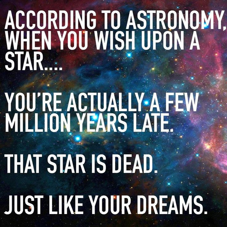 When You Wish Upon A Star Sometimes Egregious Always Gregarious