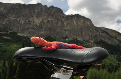 Schofield Lizard at the foot of Gothic Mountain
