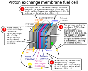 Diagram of a Proton exchange membrane fuel cel...