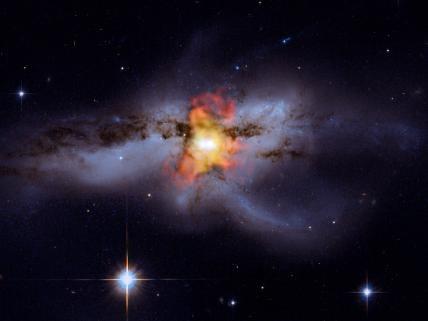 Black Holes Go