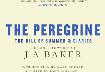 The Peregrine, The Hill of Summer, and Diaries