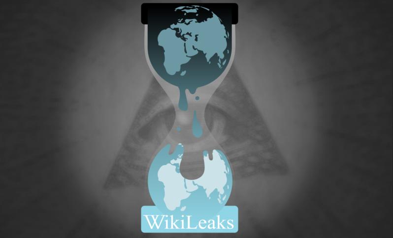 imf_wikileaks