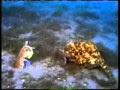 Pesona dalam lautan (Media Film)