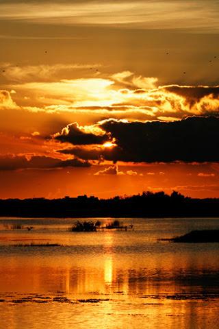 夕焼け 海のスマホ壁紙 検索結果 [1] 画像数23691枚 壁紙  - スマホ 壁紙 夕焼け