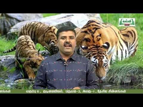 6th Social Science குடிமையியல் தேசிய சின்னங்கள்  அலகு 1 Kalvi TV