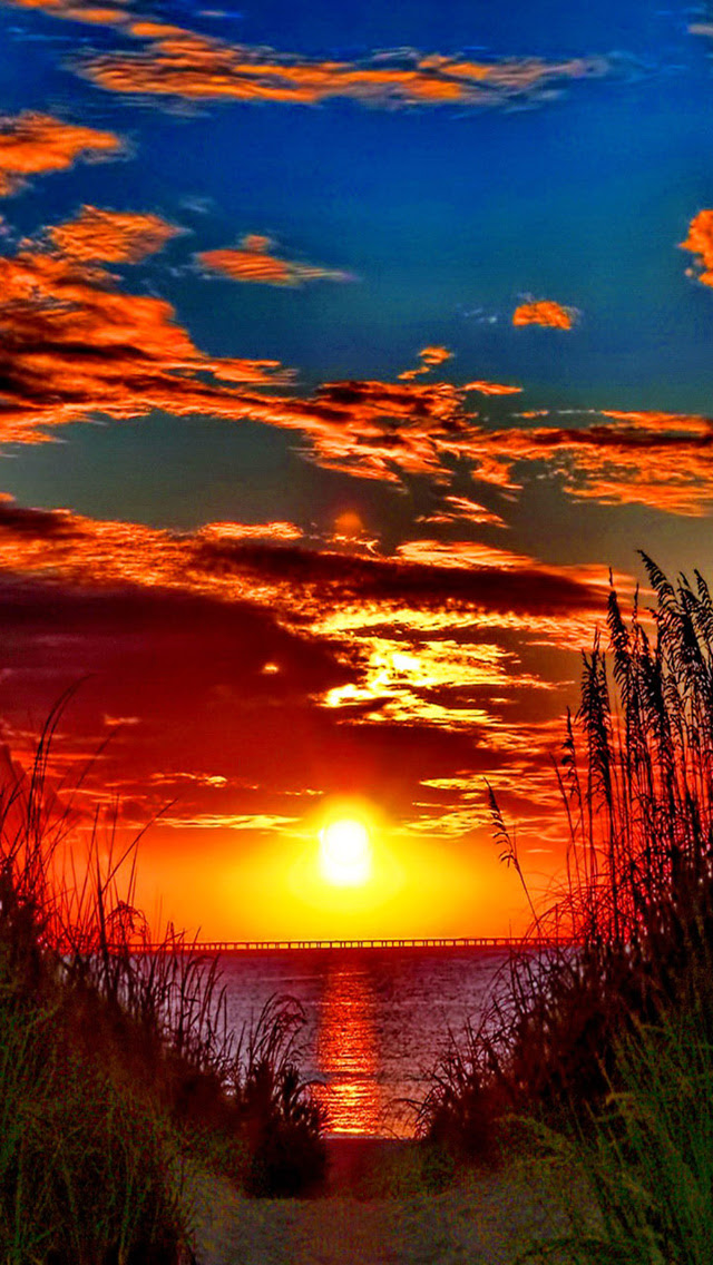 Awesome colorful sunset - The iPhone Wallpapers