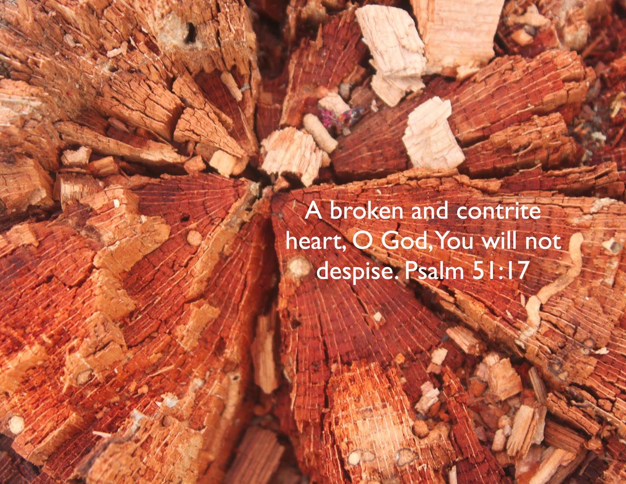 http://24.media.tumblr.com/tumblr_mdenkdktLG1rszo8ao1_1280.jpg