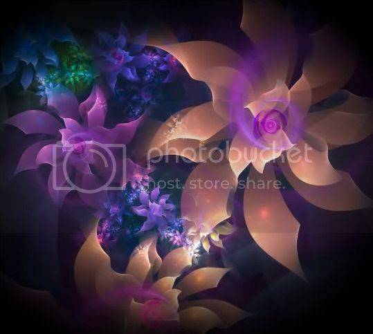 flowersgalore.jpg Pictures, Images and Photos