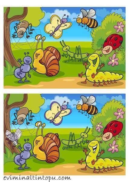 iki resim arasindaki farki bulma etkinlik sayfalari