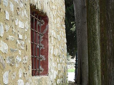 fenêtre rouge et troncs.jpg