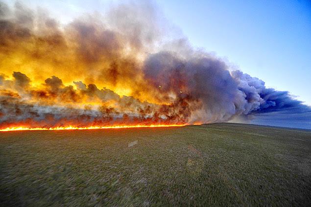 Incêndio consome vegetação na Estação Ecológica do Taim, no sul do Rio Grande do Sul, e já destruiu ao menos 1.400 hectares