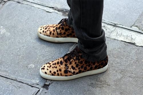 streetsnaps-cheetah