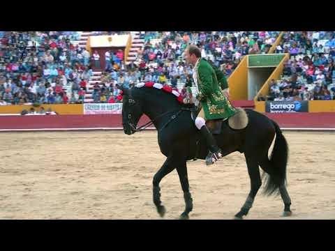 Projecto Tauromaquia Património Cultural de Portugal: o Cavalo de Toureio