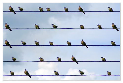 composición para cuerda y viento