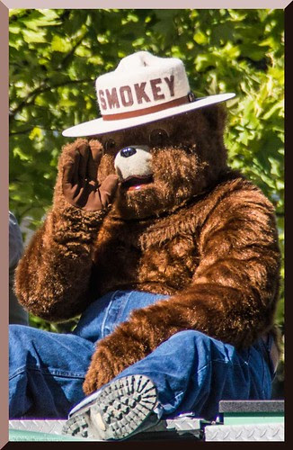 BFD_Smokey-Bear