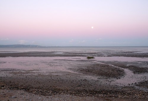 22336 -  Moonrise at Blackpill, Swansea
