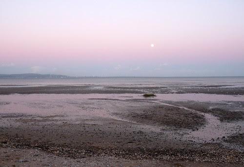 22336 -  Moonrise at Blackpill, Swansea