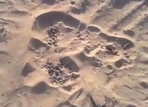 εμφύσηση άμμο της Γάζας, τη διοχέτευσή άμμο Γάζα βίντεο, τη Γάζα φυσαλίδων άμμος, άμμος διοχέτευσή του στη Γάζα, Λωρίδα της άμμου φυσαλίδων βίντεο, το βίντεο των φυσαλίδων άμμο Γάζα, βίντεο από τη διοχέτευσή άμμο στη Γάζα