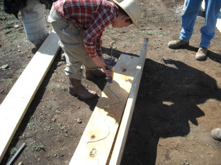 Gluing Plywood for Foundation Built-up Beam