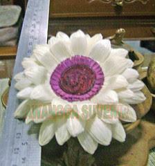 Klobot bunga astrantia tanggung
