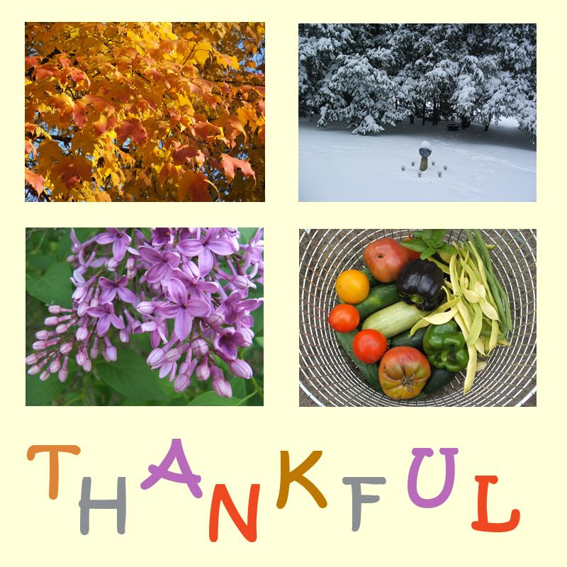 by Angie Ouellette-Tower for https://www.godsgrowinggarden.com/ photo WWthankful_zpspin08fd1.jpg