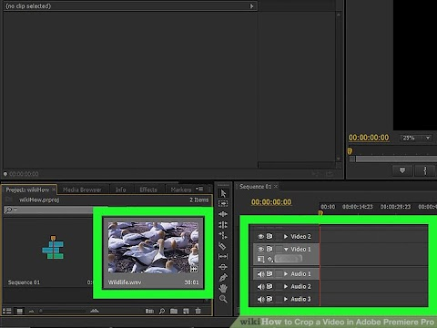 How To Crop Video In Premiere