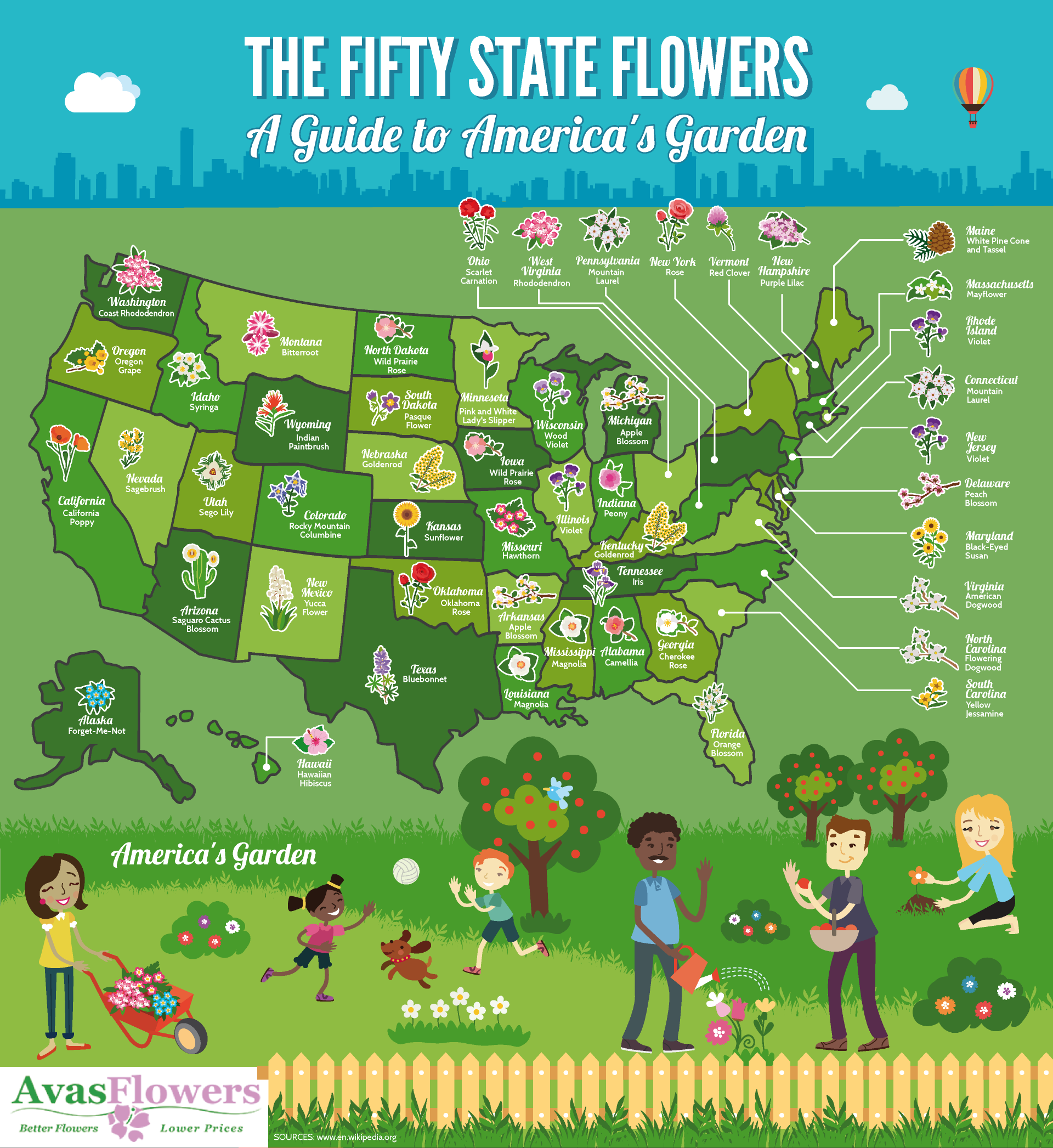 The Fifty State Flowers - A Guide to America's Garden