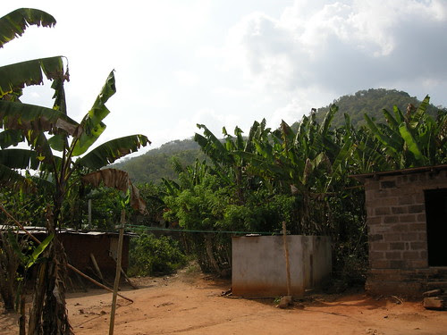 abutia view hills