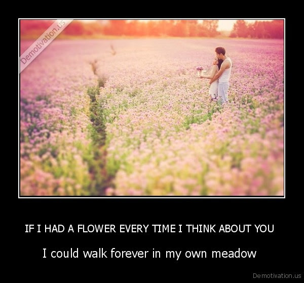 If I Had A Flower Every Time I Think About You Demotivationus