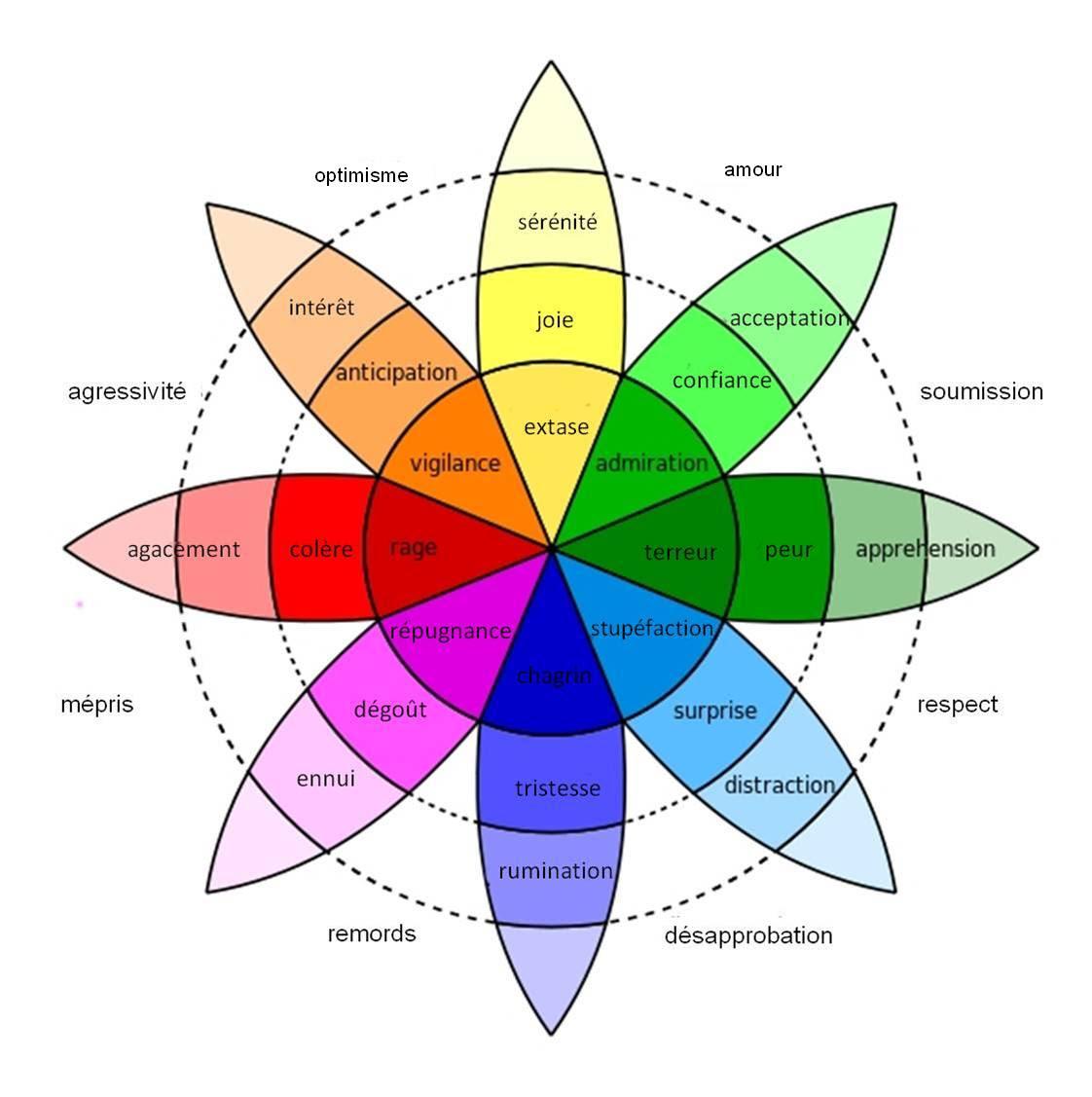 comment gérer ses émotions au travail, forum gérer ses émotions, comment gérer ses émotions livre, comment gérer ses émotions pdf,