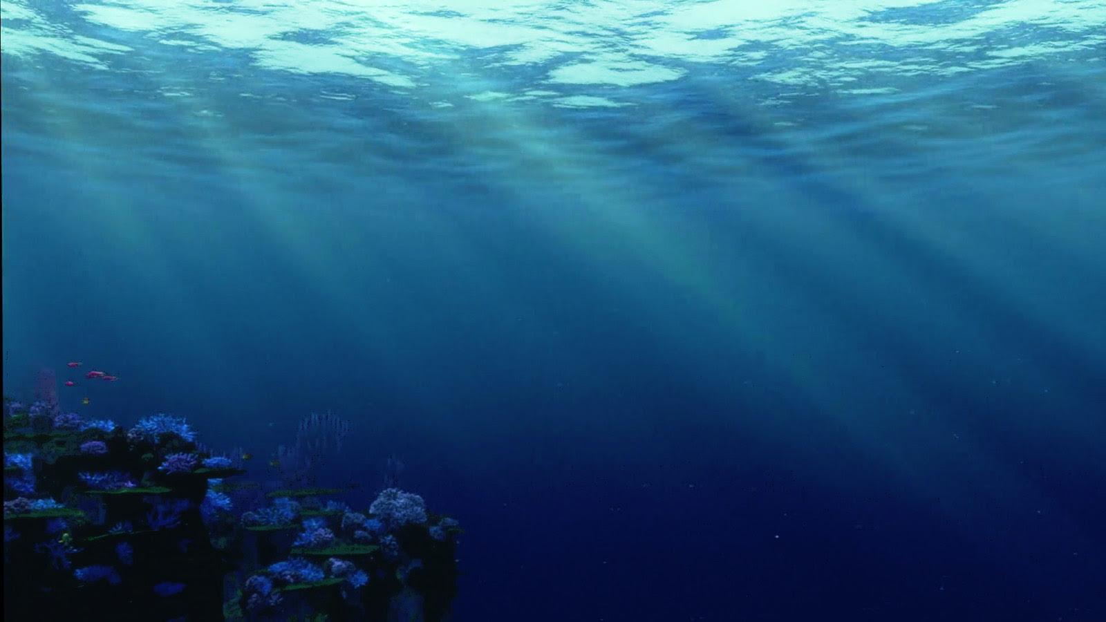 Finding Nemo 壁紙 ファインディング ニモ 壁紙 39350129