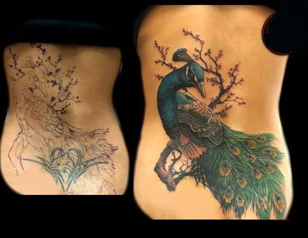 Beautiful Collarbone Cover Up With Simple Wings And Famous Stars