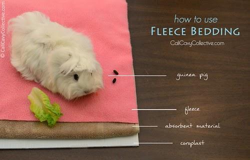 Using Fleece As Bedding For Guinea Pigs