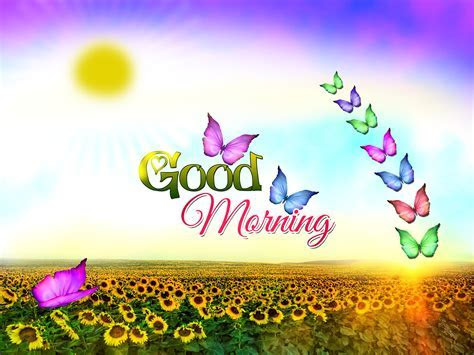 Free Good Morning Wallpapers Full Hd « Long Wallpapers