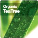 Organic Tea Tree -