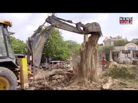 નખત્રાણા બસ સ્ટેશન વર્ષોથી ઉભેલા વૃક્ષોને ને થડ મૂળમાંથી કાઢી નાખ્યા હતા