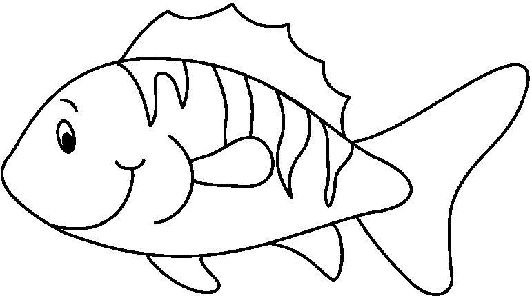 animales marinos27