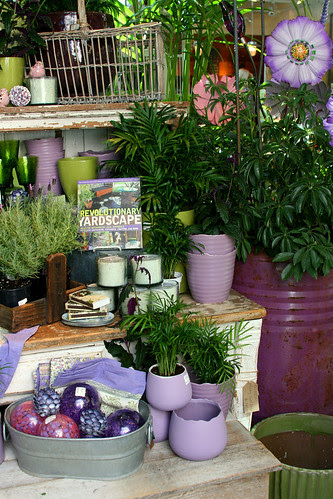purple merchandising