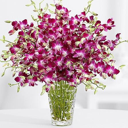 9 Best Mothers Day Flowers Delivery 2019 Bouquet Flower Delivery